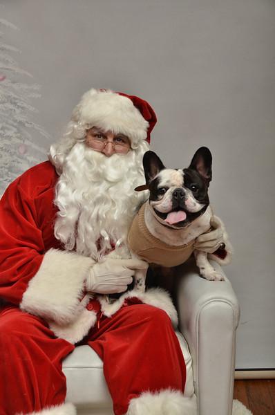 Fetch Santa13-8066