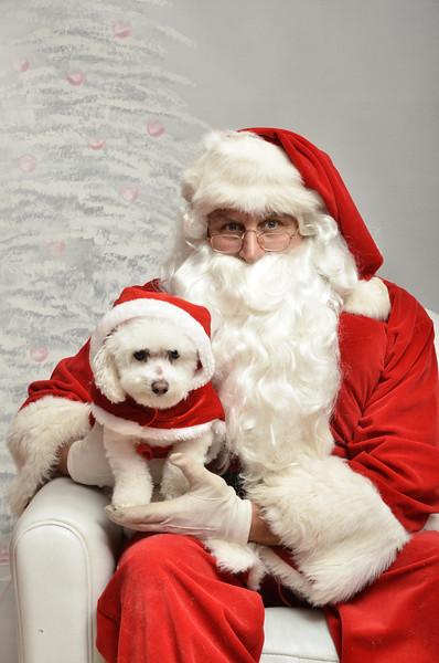 Fetch Santa13-8213
