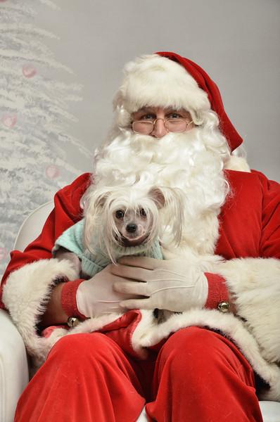 Fetch Santa13-8122