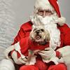 Fetch Santa13-7957