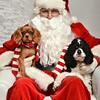 LR-Fetch Santa13-8095