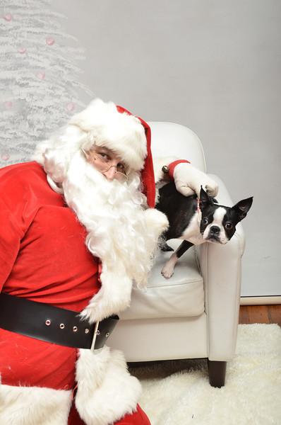 Fetch Santa13-8144
