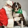 Fetch Santa13-8303