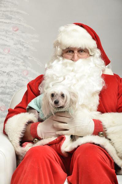Fetch Santa13-8119
