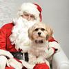 Fetch Santa13-8012