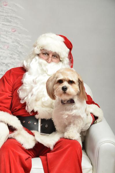 Fetch Santa13-8016