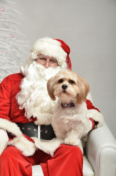 Fetch Santa13-8018