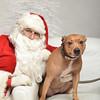 Fetch Santa13-8149