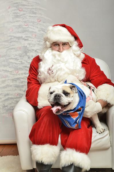 Fetch Santa13-8166