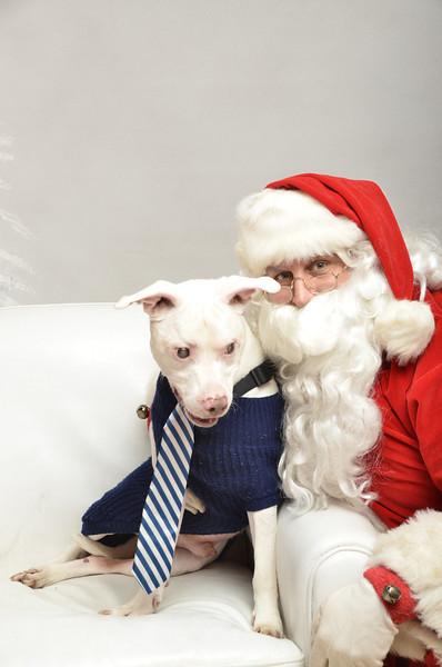 Fetch Santa13-8133