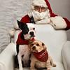 LR-Fetch Santa13-8262