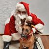 Fetch Santa13-7960