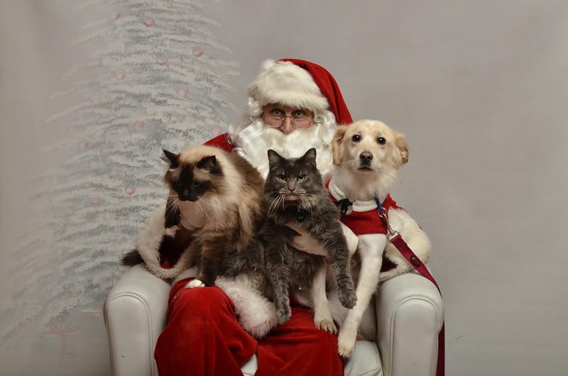 Fetch Santa13-8174