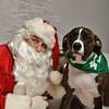 Fetch Santa13-8296