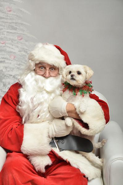 Fetch Santa13-8195