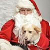Fetch Santa13-8187