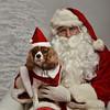 Fetch Santa13-8250