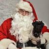 Fetch Santa13-8272