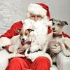Fetch Santa13-8035