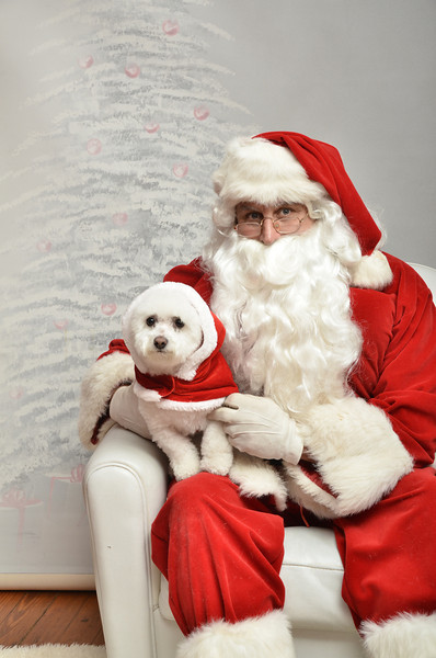 Fetch Santa13-8206