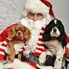 LR-Fetch Santa13-8105