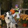 Halloween13-4306