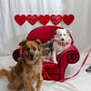 PR-Valentine2013-9882