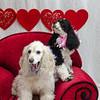 PR-Valentine2013-9912