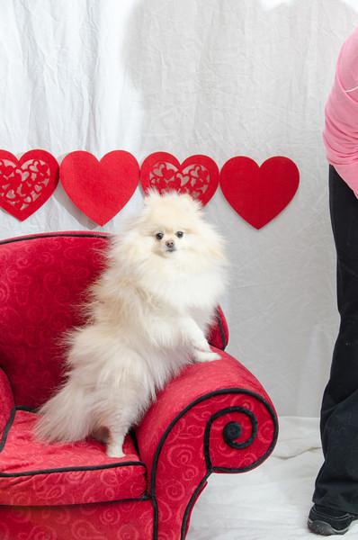 PR-Valentine2013-9758
