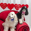 PR-Valentine2013-9901