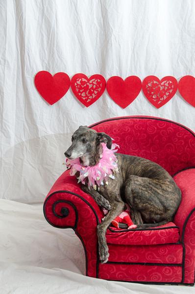 PR-Valentine2013-9782
