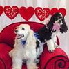 PR-Valentine2013-9903