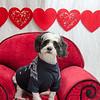 PR-Valentine2013-9753