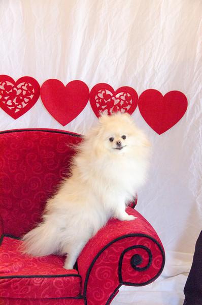 PR-Valentine2013-9763
