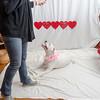 PR-Valentine2013-9973