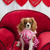 PR-Valentine2013-9813