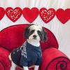 PR-Valentine2013-9754