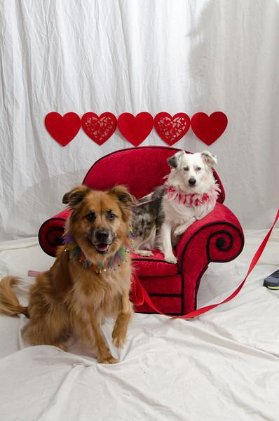 PR-Valentine2013-9883