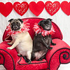 PR-Valentine2013-9750