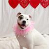 PR-Valentine2013-9981