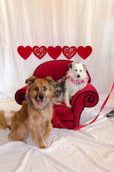 PR-Valentine2013-9885