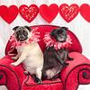 PR-Valentine2013-9751