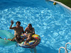Summer fun in Frank Lacey's pool