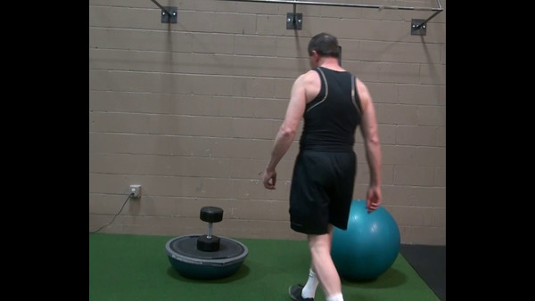 Lunges on Bosu and Exercise Balls