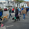 The Seeing Eye Doggy Dash Oct 2015