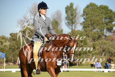 Class 6: Large Show Hunter Pony