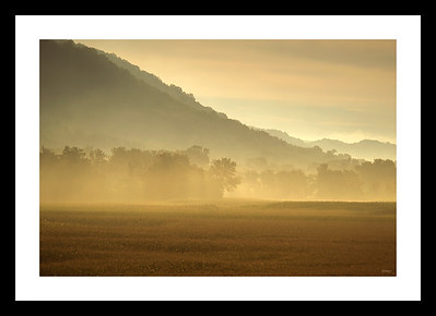 Morning Haze_080613_8067
