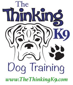 The Thinking K9