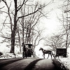 Ohio Amish families picking up children from school during the winter