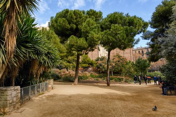 Gaudí Square Trees
